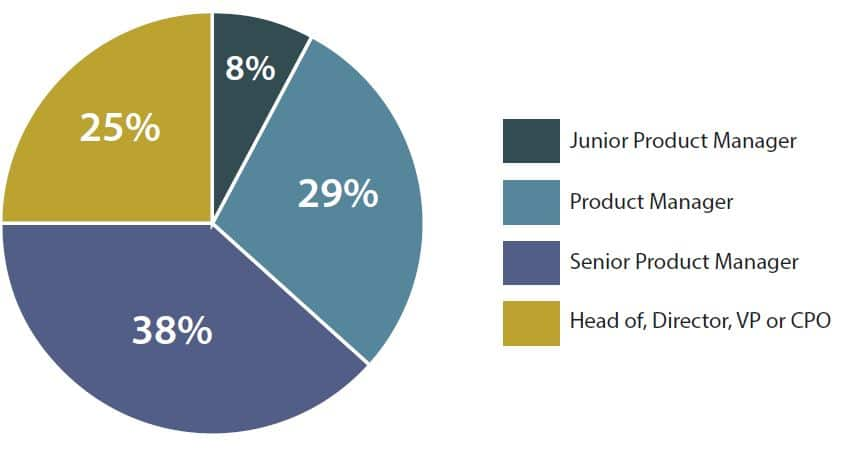 Product Management seniority levels pie chart